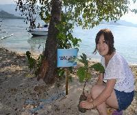Menanam Pohon Sukun di Pulau Gusung Toraja. Foto : Ridwan Rido/Disbudpar Polman