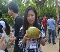Santap kelapa muda. Foto : Ridwan Rido/Disbudpar Polman